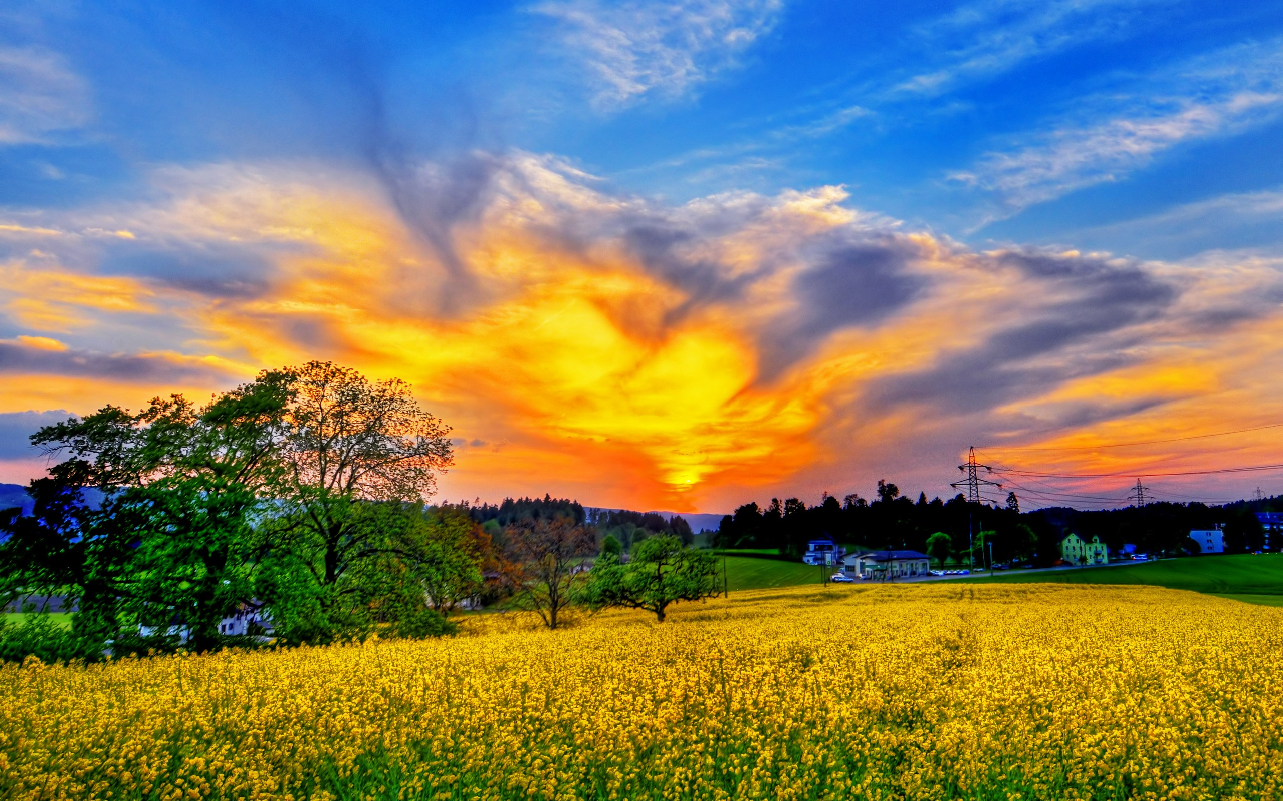 Beautiful Spring Scenery Images amp; Pictures  Becuo